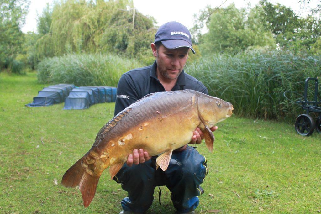 Glebe Pool 4 - 19 lb carp