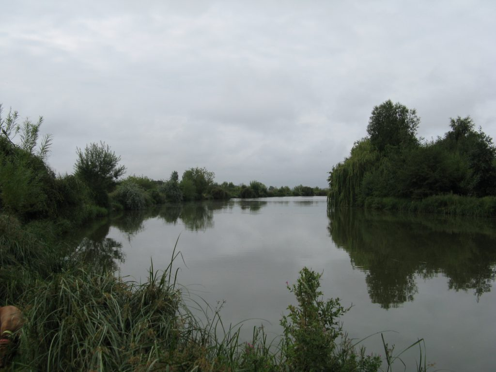 Glebe Pool 3