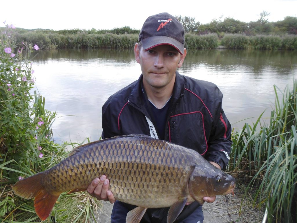 Glebe Pool 8 Common Carp